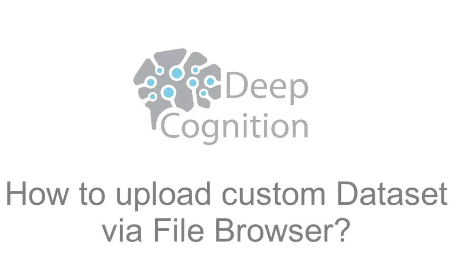 How to Upload a Custom Dataset via File Browser on Deep Learning Studio